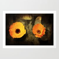a-close-up-of-a-flower-of-adonis-on-a-grunged-canvas-background-prints