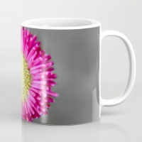 blossom-from-a-daisy-isolated-on-gray-background-mugs