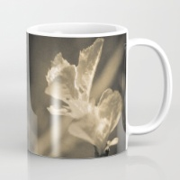 trace-of-spring-mugs