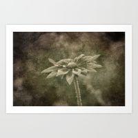vintage-flower-qzd-prints
